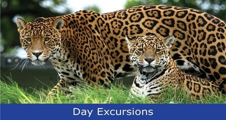 Click Here for Our Day Excursions