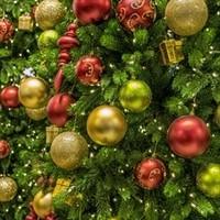 Christmas in Caernarfon, Wales