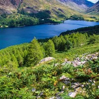 Grand Lake District Wanderer